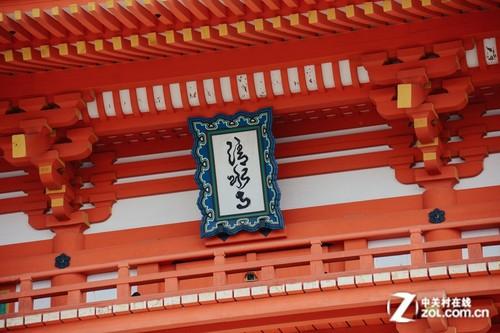 大C游世界 樱花季漫步日本京都清水寺