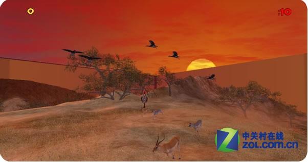 夕阳西下动物奔跑