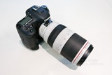 佳能EF 100-400mm f/4.5-5.6L IS II USM实拍图