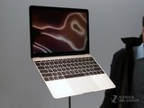 苹果MacBook 12英寸实拍图