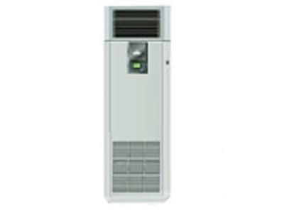 艾默生-力博特 DataMate3000(DME12M)