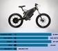 国外十大最快电动自行车