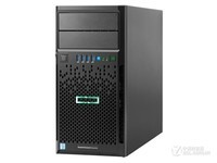 HP ProLiant ML30 Gen9(872658-AA1)