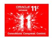 Oracle 11g 标准版1