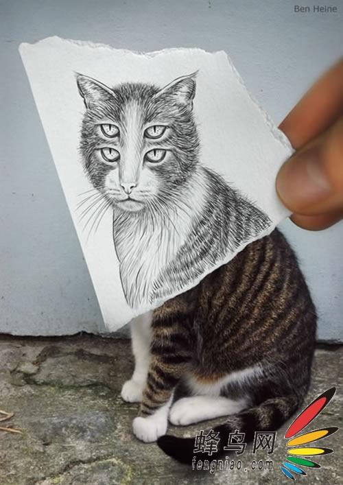 当照片遇到铅笔画图片欣赏,图6-zol中关村在线第6张