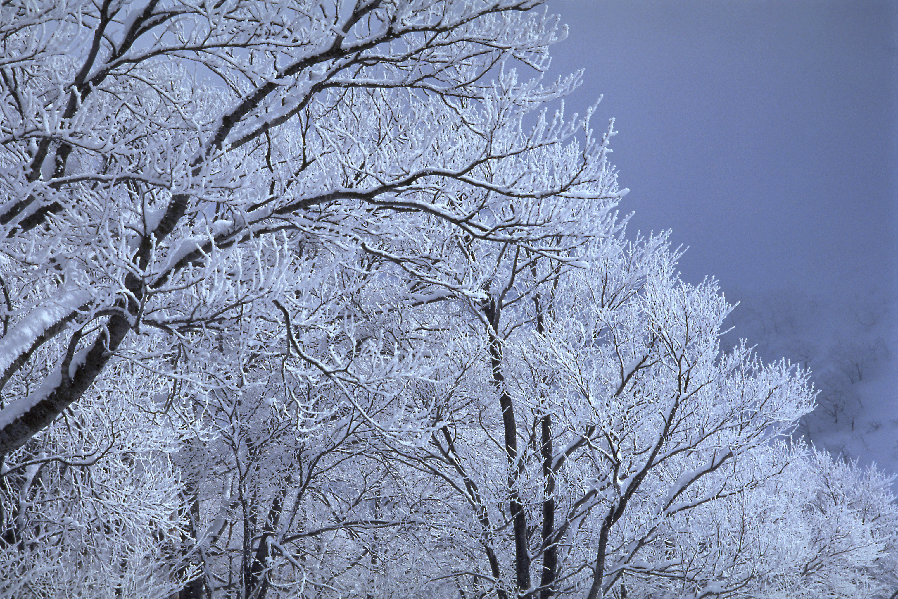 高清频道图片库 冰雪世界 冬日里的风景高清组图欣赏