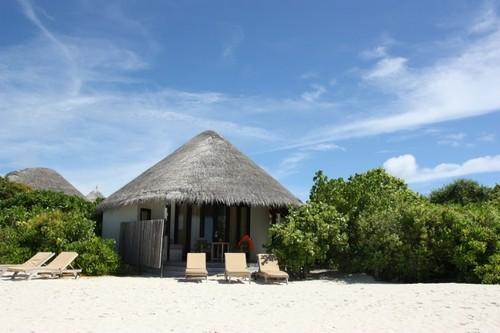 从马尔代夫蜜月游到亲自参与设计婚房