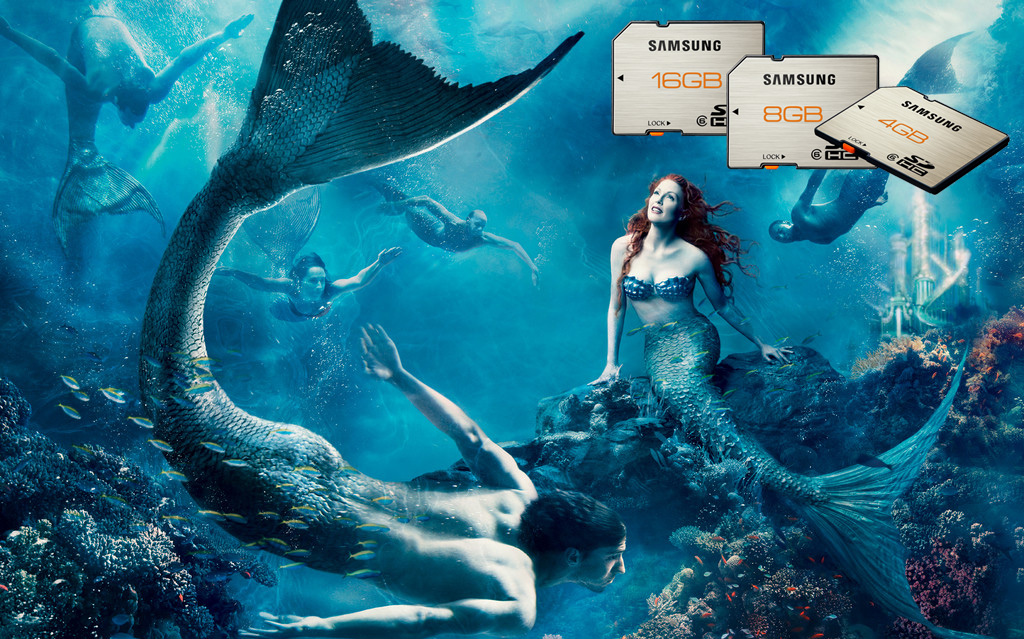 壁纸 海底 海底世界 海洋馆 水族馆 桌面 1024_639