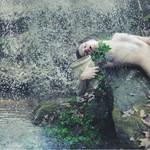 布满死亡的气息 Alexstoddard摄影作品