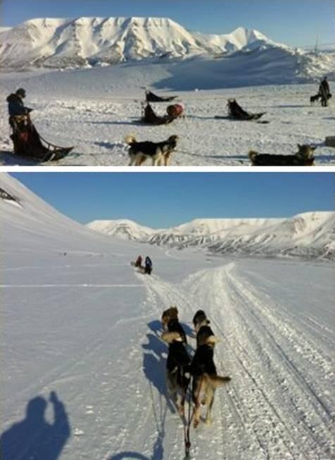 北极探险第二站——向Barneo基地进发