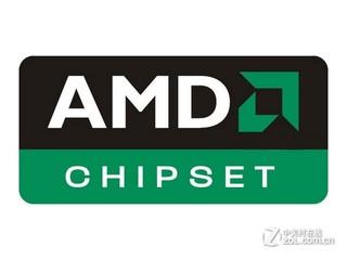 AMD X300
