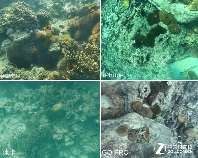 深潜暗影猎手 光荣20 PRO捕捉神秘海疆的光影
