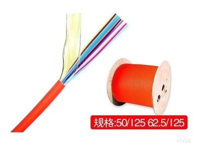 通寻兵 室内4芯多模62.5/125光缆(100米)