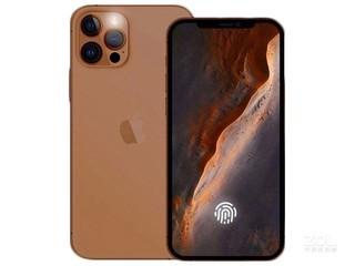 苹果iPhone 12S(全网通/5G版)