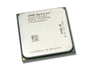 AMD 皓龙 244(散)