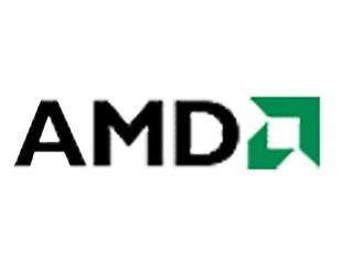 AMD V移动版