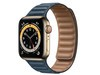 Apple Watch Series 6 40mm(GPS+蜂窝网络/不锈钢表壳/皮制链式表带)
